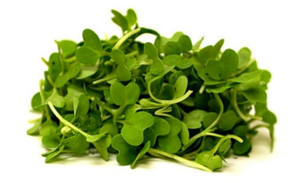 Stone Castle Farms, Mustard Microgreens